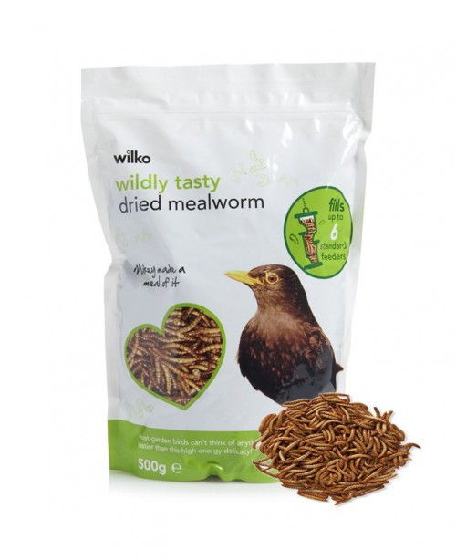 1000ct Live Giant Mealworms